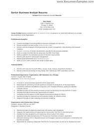 business analyst resume templates samples business resumes