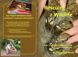rescuing wildlife books that help wildlife