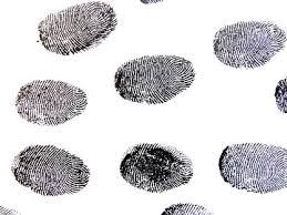 what is dna fingerprinting process u0026 uses study com