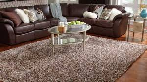 Shag Accent Rugs Incredible Large Shag Area Rugs Roselawnlutheran For Within