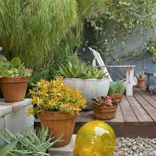 backyard with low small deck and potted plants decorating ideas