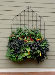 this side planted window box trellis combination www