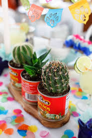 411 best cactus cacti succulents southwest images on pinterest