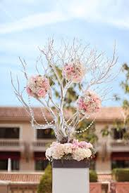 best 25 manzanita centerpiece ideas on pinterest manzanita tree