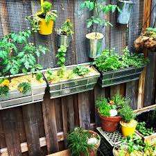 Hanging Plants For Patio 113 Best Projects Garden Vertical Images On Pinterest