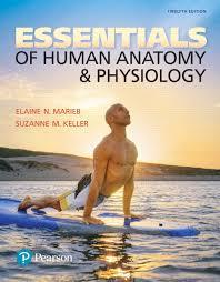 Human Anatomy And Physiology Case Studies Marieb U0026 Keller Essentials Of Human Anatomy U0026 Physiology 12th