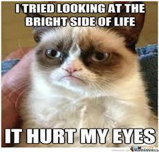 Grumpy Meme - cat y u so grumpy by unknownjedi meme center