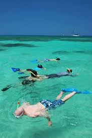 florida keys snorkeling florida keys find the exceptional areas