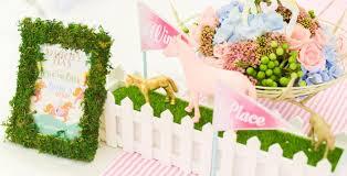 Horse Birthday Decorations Horse Birthday Party Ideas Birthday Party Ideas