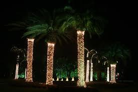 holiday lighting u0026 decorating photos plant professionals miami fl