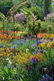 keukenhof flower gardens and flowers