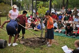planting a future elementary students poems plant trees
