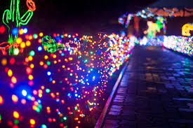 Zoo Lights In Houston by Zoo Lights Schedule Hewan Lucu Terbaru