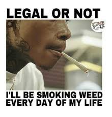 Memes About Smoking Weed - legal or not flix ill be smoking weed every day of my life meme on