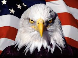 American Flag Header 1500x500 Eagle On Flag Twitter Header Photo