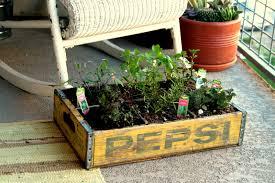 insideways diy herb garden