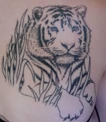 simple asian tiger tattoo tattooshunt com