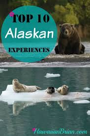 Best 25 alaska travel ideas alaska alaska