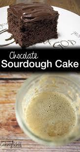 easy u0026 moist sourdough chocolate cake from scratch