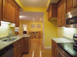 colors for a kitchen with dark cabinets what color to paint kitchen with dark cabinets amazing yellow