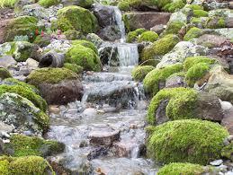 Backyard Pondless Waterfalls by Pondless Waterfall Sweetwater Landscape
