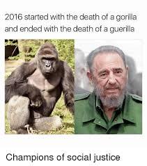 Funny Gorilla Meme - funny gorilla meme meme center