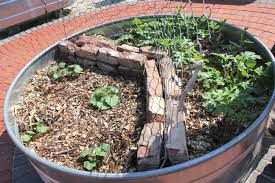 Mulching Vegetable Garden by Caes Newswire Weed Control