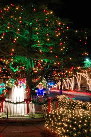 christmas lights in asheville nc 83 best christmas holidays in asheville images on pinterest