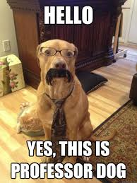 Yes This Is Dog Meme - hello yes this is professor dog professor dog quickmeme