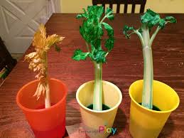 fun and easy science activities u2014 encourage play
