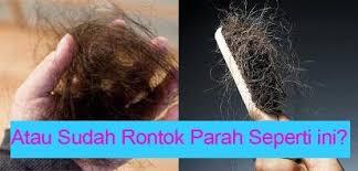 membuat minyak kemiri untuk rambut botak minyak kemiri 1 solusi masalah kerontokan kebotakan 100 alami
