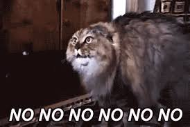 Nooo Meme - my collection of no nope disapproval scream gifs album on imgur