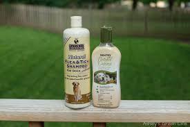 ashley u0027s green life natural flea prevention u0026 treatment