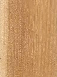 alaskan yellow cedar endgrain 10x wood types species