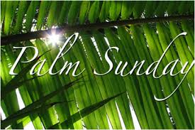 palms for palm sunday purchase palm sunday march 25 2018 bishop michael rinehart