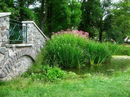 jardin feng shui jardín urbano plantas para un jardín de estilo feng shui eme de