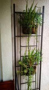 Simple Trellis Ideas Garden Trellis Ideas Trellis Ideas Plants And Backyard
