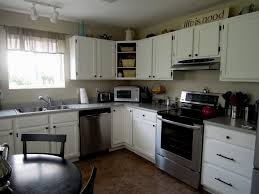 kitchen fun paint colors for kitchens with oak cabinets kitchen