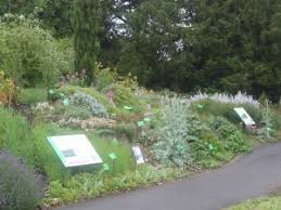 Botanic Gardens Bristol Of Bristol Botanic Garden Stoke Bishop Reviews