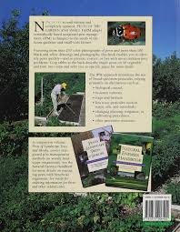 Natural Pesticides For Vegetable Gardens by Pests Of The Garden And Small Farm A Grower U0027s Guide To Using Less