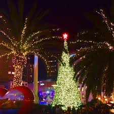 sf christmas tree lighting 2017 best christmas activities in san francisco free tours by foot