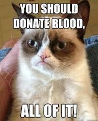 Donation Meme - grumpy cat blood donation kids a p pinterest blood donation