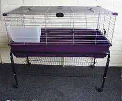 Rabbit Hutch Indoor Large Large Purple Rabbit Cage With Stand Kit Indoor Hutch Cages Guinea