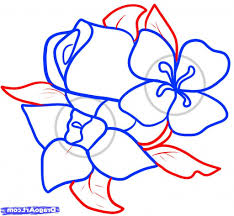 simple flower drawings step by step how to draw flowers step step