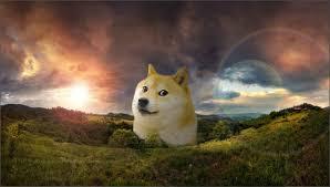 Make Doge Meme - doge meme wallpaper wallpapersafari