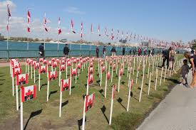 What Leaf Is On The Canadian Flag Photos Windsor Joins In Honouring Fallen Soldiers With 128 Maple