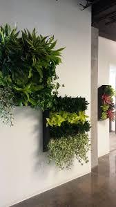 135 best green walls images on pinterest vertical gardens green