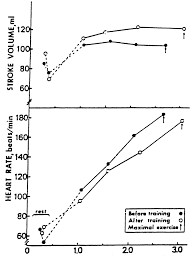 exercise standards circulation