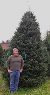 ashe now largest christmas tree producer in nation news