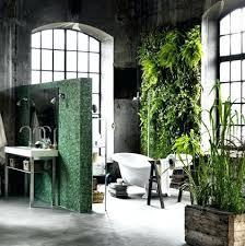plante cuisine plante pour salle de bain bilalbudhani me